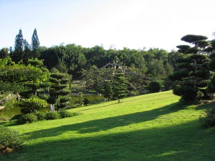 Национальный ботанический сад в Доминиканской Республике