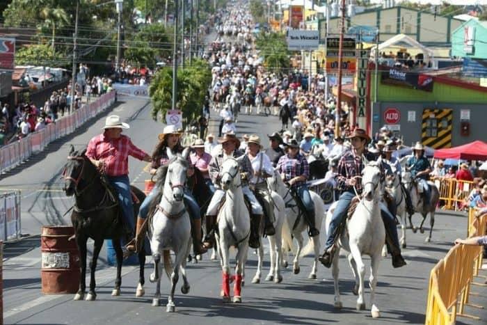 Праздники Palmares