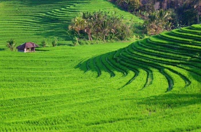 Вьетнам география